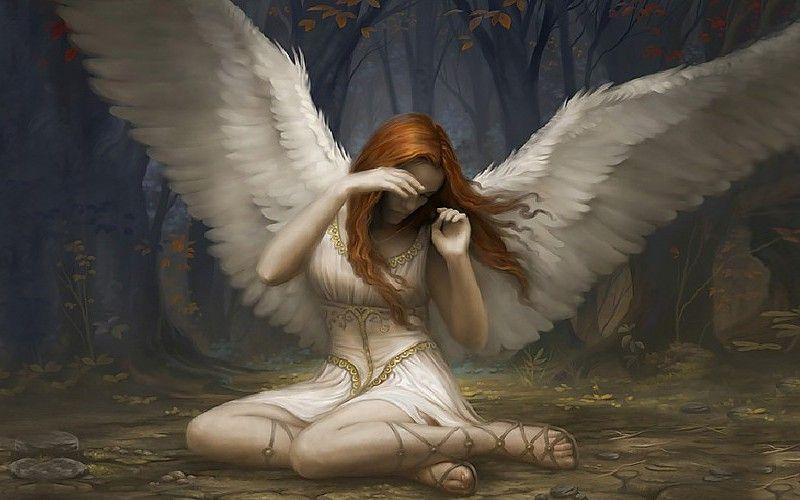 La bellezza degli angeli-5